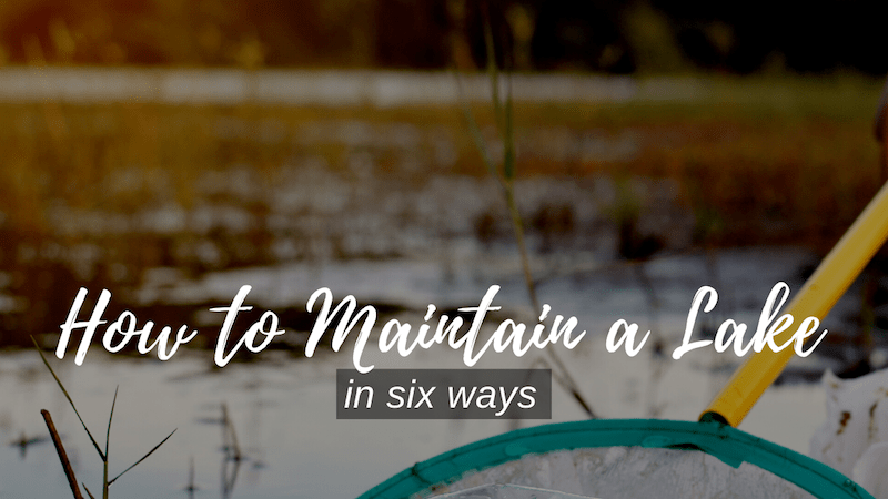 how to maintain a lake